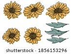 Sunflower Hand Drawn Vector...