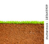 cross section of grass and soil ... | Shutterstock . vector #185645909