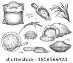 Hand Drawn Rice Flour. Retro...