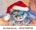 Cat With Santa Claus Hat. Funny ...