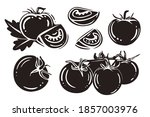 set tomatoes. black and white... | Shutterstock .eps vector #1857003976