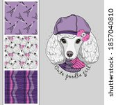 Set Of Vector Seamless Patterns ...