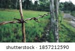 Photograph Of Barbed Wire Fenc...