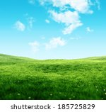 Sky and grass background  fresh ...