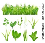 grass realistic. ecology set... | Shutterstock . vector #1857262060