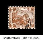 Malaysia   Circa 1905  ...