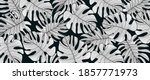 luxury black and white nature... | Shutterstock .eps vector #1857771973