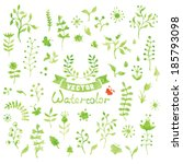 set of vector watercolor nature ... | Shutterstock .eps vector #185793098