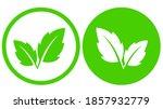 natural ecologic green leaf... | Shutterstock .eps vector #1857932779