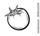 hand drawn tomato. organic eco...   Shutterstock .eps vector #1858116196