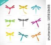 Vector Group Of Dragonfly On...