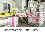 de kwakel  apr 5  unidentified... | Shutterstock . vector #185820998