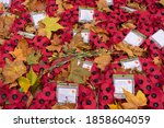 Poppy Wreaths Surrounded By...