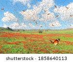 Butterflies Flutter Over The...