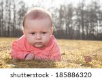 little baby on the grass in the ... | Shutterstock . vector #185886320