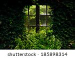 An Almost Overgrown Window In ...