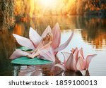Small photo of Happy fantasy young blonde woman little fairy princess sitting in pink lotus flower on lake water. Elf girl, with smiling face. Autumn nature background orange trees divine magic sun light. Pink dress