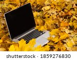 Laptop Lying On Dry Leaves...