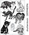 hand drawn cat vector set   Shutterstock .eps vector #185948396