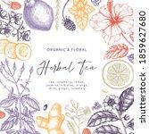hand sketched herbal tea... | Shutterstock .eps vector #1859627680