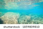 Underwater view of Alghero shore's rocky seabed. Sardinia, Italy - stock photo