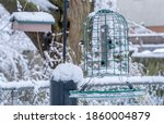 Black Capped Chickadee At The...
