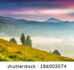 beautiful summer landscape in... | Shutterstock . vector #186003074