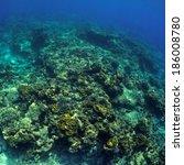 coral reef under water. | Shutterstock . vector #186008780