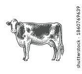 cow. hand drawn engraving style ... | Shutterstock .eps vector #1860769639