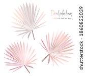 trendy dried tropical vector... | Shutterstock .eps vector #1860823039
