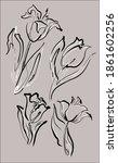drawing set vector graphics...   Shutterstock .eps vector #1861602256