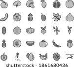 thin line gray tint vector icon ...   Shutterstock .eps vector #1861680436