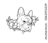 the bulldog. can be used as a... | Shutterstock .eps vector #1862051029