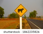 watch out for the cow crossing...   Shutterstock . vector #1862235826