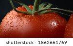 Appetizing Tomato. Juicy Tomato ...