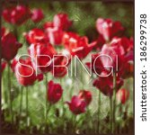 bright spring background    Shutterstock .eps vector #186299738