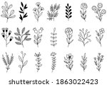 collection forest fern...   Shutterstock .eps vector #1863022423