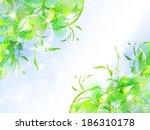 leaf fern landscape | Shutterstock .eps vector #186310178