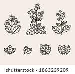 tobacco leaf icons set.... | Shutterstock .eps vector #1863239209