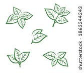 mint leaves collection set.... | Shutterstock .eps vector #1863244243