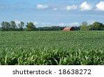 corn field with farmer's barn...   Shutterstock . vector #18638272