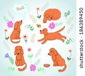 set on the life merry spaniel....   Shutterstock .eps vector #186389450