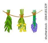 set of dried herbs. cartoon... | Shutterstock .eps vector #1864181329