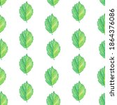 Seamless Pattern Of Green Alder ...