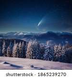 Bright comet above the winter spruces on a frosty night. Location place Carpathian mountains, Ukraine, Europe. Long exposure shot, astrophotography. Photo wallpaper. Discover the beauty of earth.