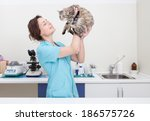 Stock photo young female veterinary caring of a cute cat 186575726