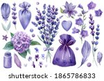Set Of Elements Lavender...