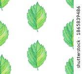 Foliage Seamless Pattern Of...