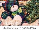 A Cute Teddy Bear Near A...