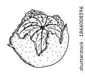 peeled winter juicy symbol...   Shutterstock .eps vector #1866008596